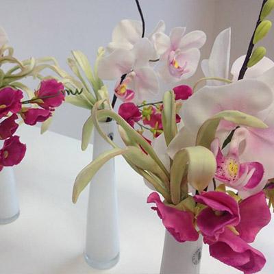 Orchideen Kurse